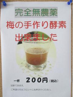 手作り梅の酵素